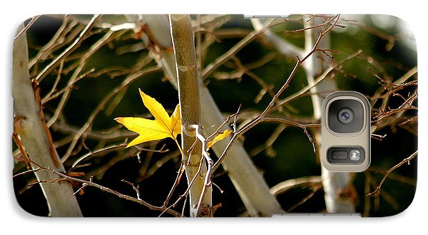 Galaxy Case featuring the photograph Last Leaf by Kume Bryant