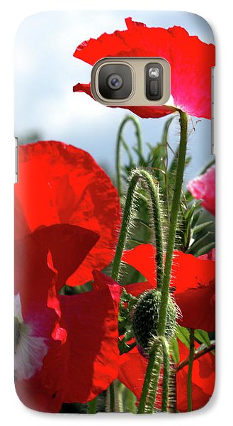Galaxy Case featuring the photograph Last Poppies Of Summer by Baggieoldboy