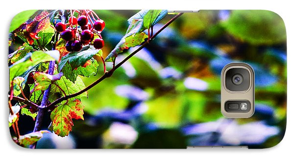 Galaxy Case featuring the photograph Late Summer Rain by Edward Peterson