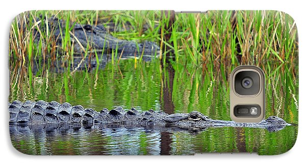 Galaxy Case featuring the photograph Later Gator by Al Powell Photography USA