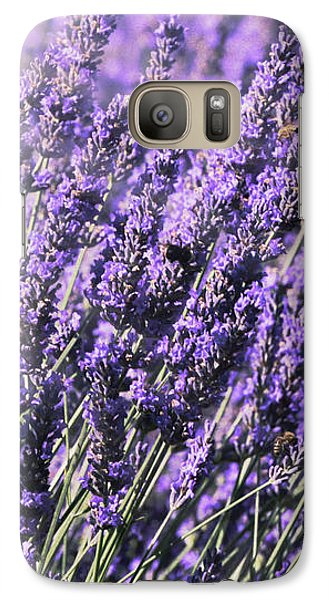 Galaxy Case featuring the photograph Lavender And Tiger Swallowtail In The Morning Light by Diane Schuster