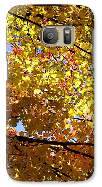 Galaxy Case featuring the photograph Layers Of Autumn by Corinne Rhode
