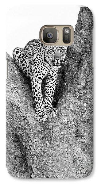 Leopard In A Tree Galaxy S7 Case by Richard Garvey-Williams