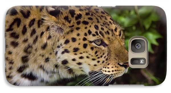 Galaxy Case featuring the photograph Leopard by Steve Stuller