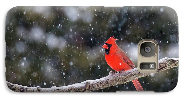 Galaxy Case featuring the photograph Let It Snow by Mircea Costina Photography
