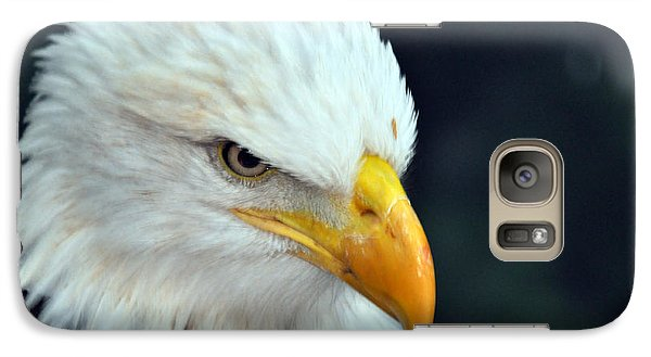 Galaxy Case featuring the photograph Liberty Watching by Teresa Blanton
