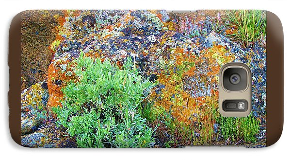 Galaxy Case featuring the photograph Lichen Rainbow   by Michele Penner