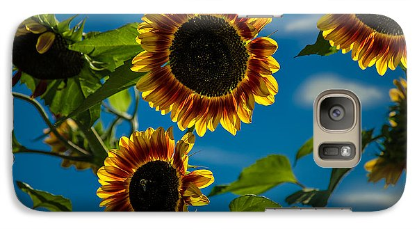 Galaxy Case featuring the photograph Life Of A Bumble Bee by Jason Moynihan