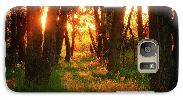 Galaxy Case featuring the photograph Light Of The Forest II by John De Bord