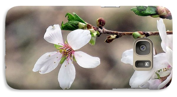 Galaxy Case featuring the photograph Light Pink Weeping Cherry Blossom by Janice Drew