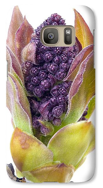 Galaxy Case featuring the photograph Lilac Bud by Jim Hughes
