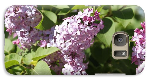 Galaxy Case featuring the photograph Lilacs 5544 by Antonio Romero