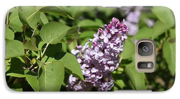 Galaxy Case featuring the photograph Lilacs 5551 by Antonio Romero