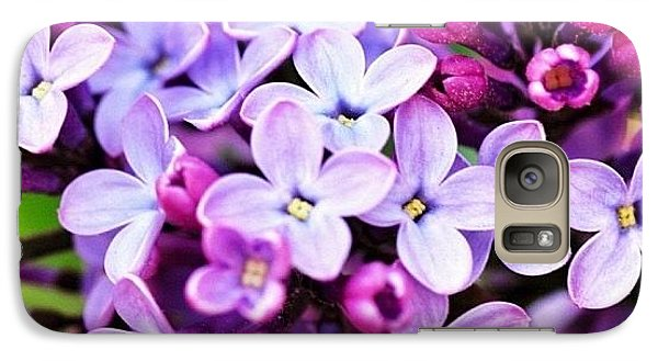 Galaxy Case featuring the photograph Lilacs by Penni D'Aulerio