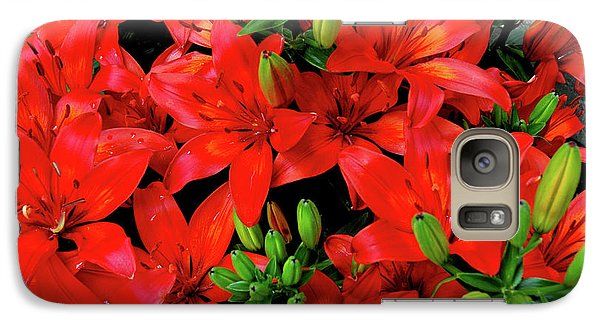 Galaxy Case featuring the photograph Lily Blossoms by LeeAnn McLaneGoetz McLaneGoetzStudioLLCcom