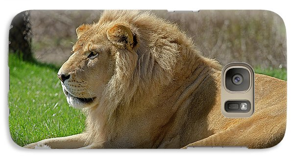 Galaxy Case featuring the photograph Lion by JT Lewis