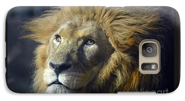 Galaxy Case featuring the photograph Lion Portrait by Savannah Gibbs