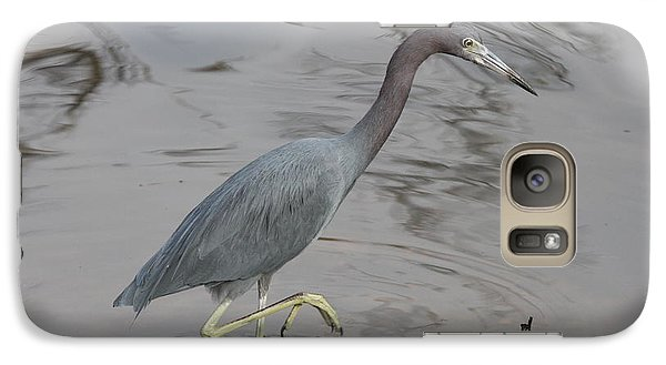 Galaxy Case featuring the photograph Little Blue Heron Walking by Christiane Schulze Art And Photography