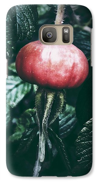 Galaxy Case featuring the photograph Little Lady Rosehip by Karen Stahlros