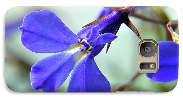 Galaxy Case featuring the photograph Lobelia Erinus by Terence Davis