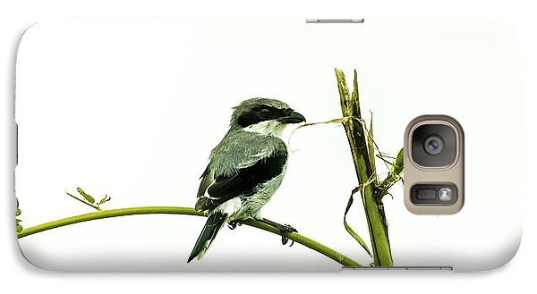 Galaxy Case featuring the photograph Loggerhead Shrike And Mantis by Robert Frederick