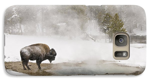 Galaxy Case featuring the photograph Bison Keeping Warm by Gary Lengyel