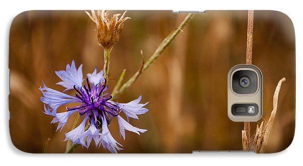 Galaxy Case featuring the photograph Lone Cornflower by David Isaacson