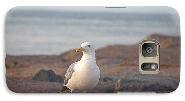 Galaxy Case featuring the photograph Lone Gull by  Newwwman