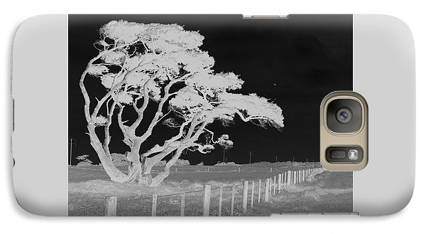Galaxy Case featuring the photograph Lone Tree, West Coast by Nareeta Martin