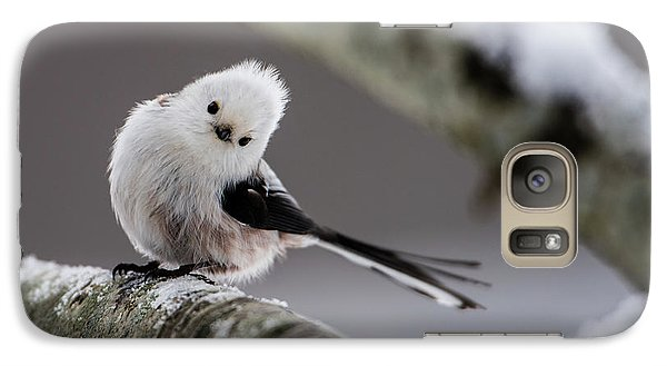 Galaxy Case featuring the photograph Long-tailed Look by Torbjorn Swenelius
