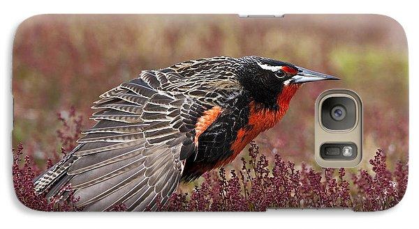 Long-tailed Meadowlark Galaxy S7 Case by Jean-Louis Klein & Marie-Luce Hubert
