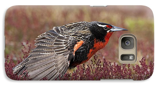 Long-tailed Meadowlark Galaxy S7 Case