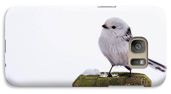 Galaxy Case featuring the photograph Long-tailed Tit On The Pole by Torbjorn Swenelius
