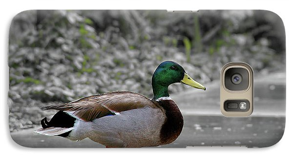 Galaxy Case featuring the photograph Lost Duck by Mariola Bitner