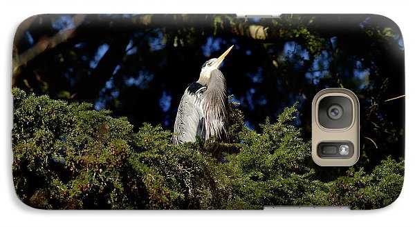 Galaxy Case featuring the photograph Lost Lagoon Great Blue Heron 5 by Terry Elniski