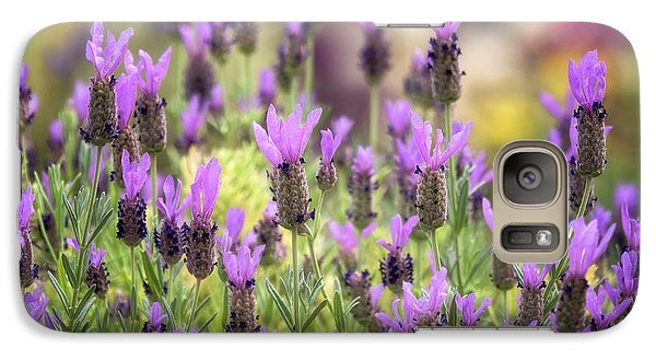 Galaxy Case featuring the photograph Lots Of Lavender  by Saija Lehtonen