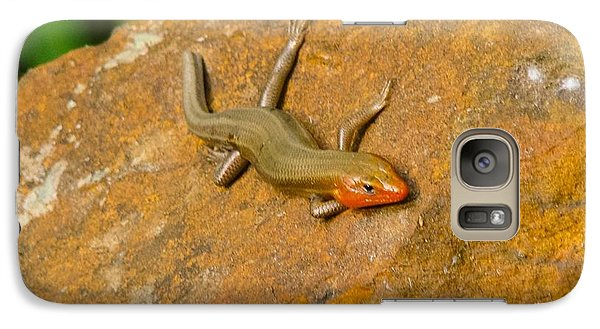 Galaxy Case featuring the photograph Lounging Lizard by Rand Herron