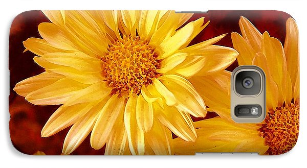 Galaxy Case featuring the photograph Lovely Mums by Patricia L Davidson