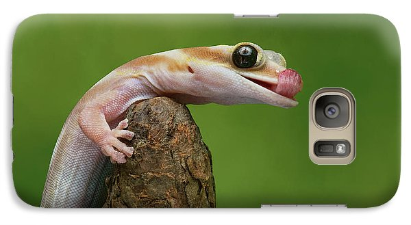 Galaxy Case featuring the photograph Lovely Water - Velvet Gecko by Nikolyn McDonald