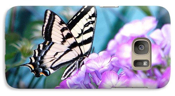 Galaxy Case featuring the photograph Loving Phlox by Judyann Matthews