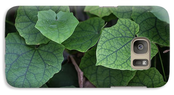 Galaxy Case featuring the photograph Low Key Green Vines by Jingjits Photography