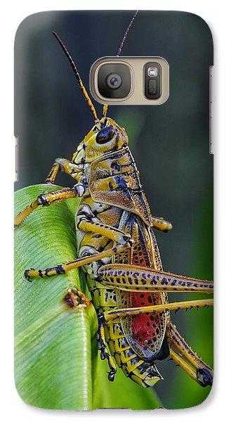 Lubber Grasshopper Galaxy S7 Case