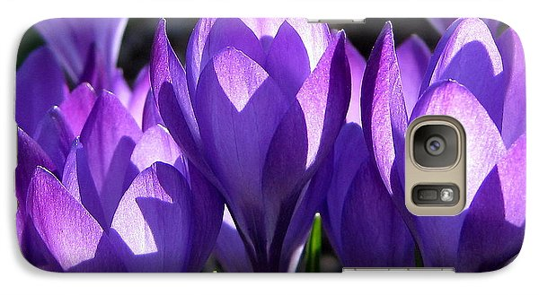 Galaxy Case featuring the photograph Luminous Floral Geometry by Byron Varvarigos