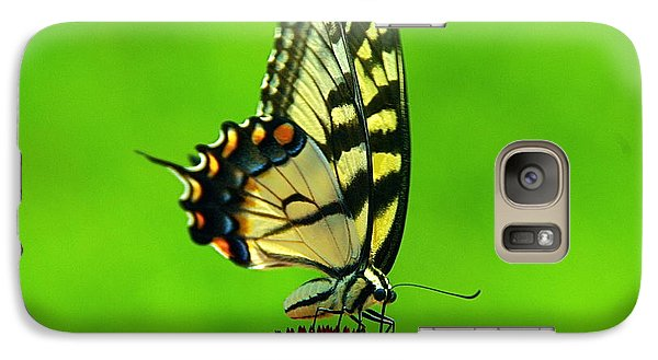 Galaxy Case featuring the photograph Lunchtime by Byron Varvarigos