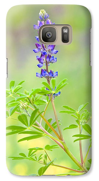 Galaxy Case featuring the photograph Lupine by Ram Vasudev