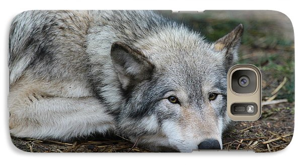 Galaxy Case featuring the photograph Lying In Wait by Laddie Halupa