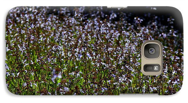 Galaxy Case featuring the photograph Lyre Leaf Sage by Barbara Bowen