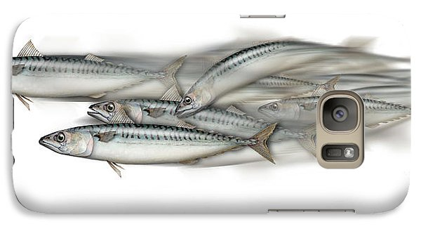 Galaxy Case featuring the painting Mackerel School Of Fish - Scomber - Nautical Art - Seafood Art - Marine Art -game Fish by Urft Valley Art