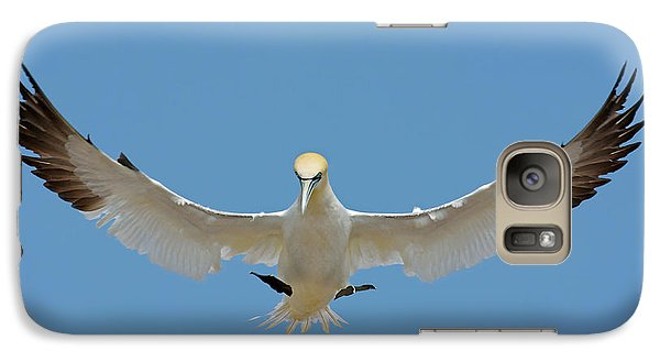 Galaxy Case featuring the photograph Maestro by Tony Beck