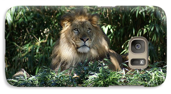 Galaxy Case featuring the photograph Magestic Lion by Heidi Poulin